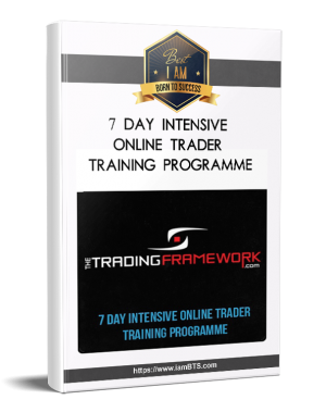 |7 DAY INTENSIVE ONLINE TRADER TRAINING PROGRAMME
