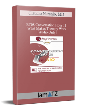 BT08 Conversation Hour 11 – What Makes Therapy Work