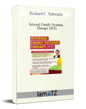 Richard C. Schwartz - Internal Family Systems Therapy (IFS) A Revolutionary & Transformative Treatment of PTSD, Anxiety, Depression, Substance Abuse - and More!